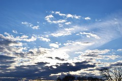 Cloudy (marensr) Tags: park blue trees sky sun silhouette clouds cloudy horner chicgo