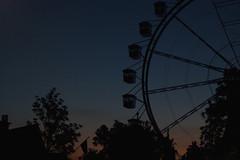 caminho do mundo (quedy!) Tags: park parque light sunset pordosol luz wheel contraluz giant de counter theme noise hari hopi rodagigante diverses silhueta rudo