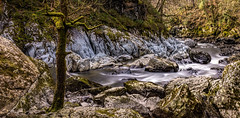 Conway rapids (Anthony White) Tags: longexposure trip light tree green nature water stone rural river landscape march mar moss day waves walk sony paisaje falls rapids gb betwsycoed northwales explored sonyalpha riverconway fairyglengorge