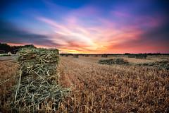 Field of Dreams (Daniel Sanculi) Tags: vintage nikon long exposure angle hyperfocal farm wide d750 hay nikkor bales hdr focusing f4g 1635mm
