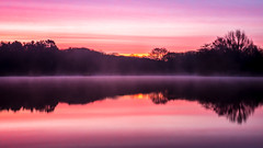 Dawn @ Shipley Park (Riot Photography 101) Tags: park trees lake water sunrise reflextion