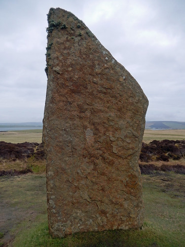 Stone in the Ring of Brodgar