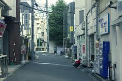 seventh day (edwardpalmquist) Tags: road street city travel people urban woman plant building tree nature fashion japan architecture tokyo alley shibuya harajuku