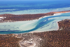 Shark Bay - 5450