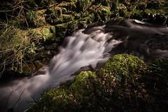 Watersmeet (ttrendell) Tags: forest canon waterfall long exposure devon filter lee cascade lynmouth density watersmeet neutral