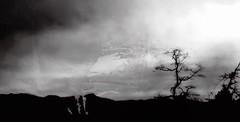 witch haven (parfois) Tags: travel trees sky blackandwhite bw mist storm haven nature beautiful silhouette horizontal fog mystery clouds dark landscape spring noir shadows sad witch smoke perspective atmosphere land melancholy skeletal vastness immensity parfois aprilwasteland