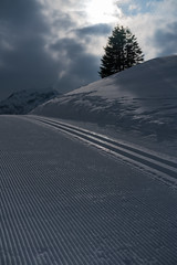 20160324-DSC06185 (Hjk) Tags: schnee winter ski sterreich schrcken warth vorarlberg