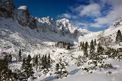 Mala studena dolina (Juro Kovacik) Tags: winter snow mountains nature landscape hiking slovakia dolina tatry tatras malastudena