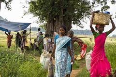 Market in Alnar (wietsej) Tags: india market 17 50 chhattisgarh minoltadynax7 bastar sal50f17 alnar