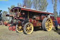 SE_Burrell_3936_McLeansIsland_09April2016 (nzsteam) Tags: price train island traction engine railway scene steam engines locomotive boiler boilers mcleans sawmilling