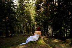 Greenwood (stefaniebst) Tags: wood portrait sunlight selfportrait france tree nature tattoo forest self peace autoportrait fineart greenwood wanderlust portraiture imagination foret wandering sapin paix fineartphotography firtree tatouage underwood arige naturescape conceptualphotography conceptphoto artisticbachshot