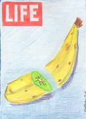 Lifes appearances (lahermanafieltrovitz) Tags: life color pencil magazine painting surrealism banana cover kiwi lpiz fieltrovitz