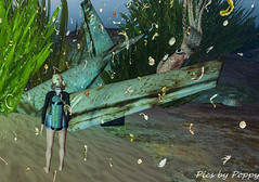 Whimsy-16 (Popis_second_life) Tags: whimsy secondlife