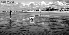 Reflet d'un instant (hobbyphoto18) Tags: people blackandwhite bw dog chien mer france reflection beach walking seaside sand noiretblanc pentax sable nb reflet human northsea blacknwhite extérieur nordpasdecalais plage personne dunkerque merdunord k50 humain littoral cotedopale borddemer leffrinckoucke pentaxk50