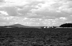 Motor Vessel From Sch Roseway 8-23-1988mrf1 (ironmike9) Tags: ocean sea water islands bay coast boat seaside ship maine vessel atlantic sail schooner seacoast mv motorvessel roseway