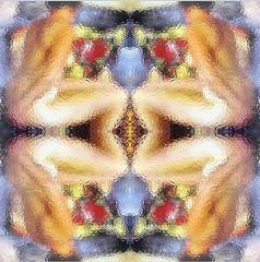 2016-04-28 symmetrical nudes 1 (april-mo) Tags: art collage nude experimental nu blurred symmetry symmetric flou experimentalart