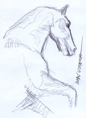 caballo a lapicero (ivanutrera) Tags: horse animal pen caballo sketch drawing draw dibujo lapicero boligrafo cuadrupedo dibujoalapicero dibujoenboligrafo