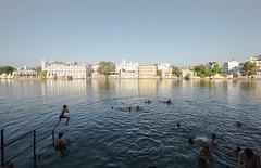 Gangaur Ghat (Cam_Buff) Tags: trip travel india lake reflection tourism water palace wanderlust desi jaipur wander wanderer jaisalmer rajasthan udaipur jodhpur ghat marwar rajasthani gangaur waterbody mewar marwari