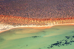 Shark Bay - 5303