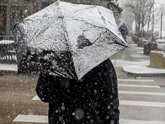 { springtime in the Rockies - a closer look } (Web-Betty) Tags: street city urban white snow storm umbrella spring colorado denver