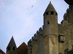 Les remparts (Doonia31) Tags: france monument tour dordogne prigord pierres chteau oiseaux remparts dfense beynac mdival chteaufort