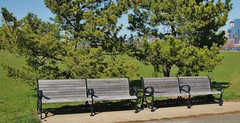 Empty Benches Liberty State Park Jersey City (K Lyden Photos) Tags: park trees jerseycity outdoor libertystatepark emptybenches