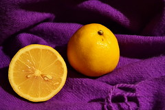 Cure for cold - Hls ellen (Zsofia Nagy) Tags: food yellow lemon purple lila srga citrom colourartaward coloursplosion d3100 22ccfbt
