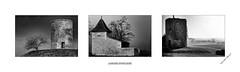 Aurore bucolique (yoyolg33) Tags: nature moulin blackwhite nb campagne triptyque nikond3 sigma85f14 stflixdefoncaude