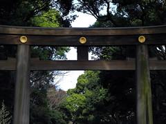DSCN2165 (hiroshi.nakatani) Tags: japan tokyo nikon shinto harajyuku newer p7000