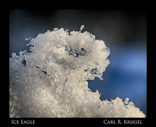 09 Ice Eagle