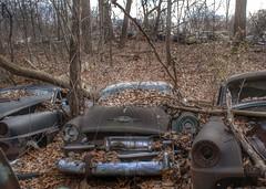 DSC08584.ARW-01 (juice95m3) Tags: abandoned rust vintagecar automobile junkyard oldcars classiccars