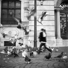 Madness... all around... (Srgio Miranda) Tags: street blackandwhite bw 6x6 portugal monochrome mediumformat photography streetphotography porto delta100 ilford analogphotography 120mm kiev88 filmphotography kiev88cm filmisnotdead srgiomiranda squarephotography sergiomiranda