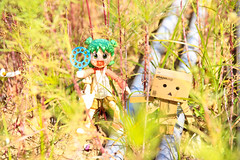 IMG_97399-2 (claire AN) Tags: yotsuba