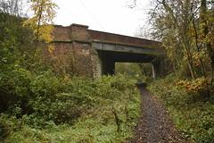 Wintersett (99) (rs1979) Tags: yorkshire wakefield walton westyorkshire backlane ryhill wintersett anglerscountrypark