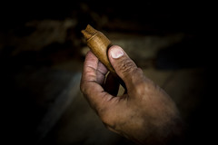 _62A0891 (gaujourfrancoise) Tags: cuba carribean tabac cigars tobacco cigares carabes tobaccoleaves feuillesdetabac gaujour