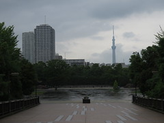 IMG_8670 (Momo1435) Tags: japan tokyo koto kotoku