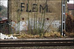 Flem (Alex Ellison) Tags: urban graffiti boobs railway roller graff pbs trackside flem