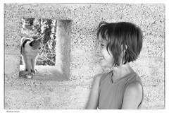 (Laszlo Horvath 800k+ views tx :)) Tags: portrait cat blackwhite portraiture portr nikon28105mmf3545 nikond7100
