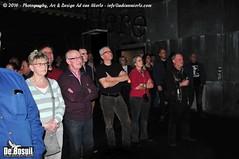 2016 Bosuil-Het publiek bij Bail en King King 1