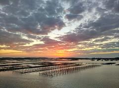 IMG_20160212_175124_HDR (Jason C. 08) Tags: ocean sunset sea farm oyster hdr