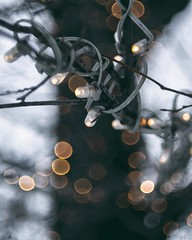 garland (JulieLester) Tags: winter cute beauty square photography photo amazing bokeh garland squareformat instagramapp uploaded:by=instagram