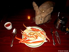 Dr. Takeshi Yamada and Seara (Coney Island sea rabbit) at the East Ocean Chinese Buffet in Brooklyn, NY on January 29, 2016. This is their favorite Chinese restaurant in New York.  20160129Fri DSCN3825=0020C1 (searabbits23) Tags: nyc ny newyork sexy celebrity art fashion animal brooklyn painting asian coneyisland japanese star tv google king artist dragon god manhattan wildlife famous gothic goth chinese performance pop taxidermy cnn tuxedo bikini portraiture tophat unitednations playboy entertainer takeshi samurai genius donaldtrump mermaid amc johnnydepp mardigras salvadordali unicorn billclinton hillaryclinton billgates aol vangogh curiosities sideshow jeffkoons globalwarming takashimurakami pablopicasso steampunk yamada damienhirst cryptozoology freakshow barackobama seara immortalized takeshiyamada museumofworldwonders roguetaxidermy searabbit ladygaga climategate