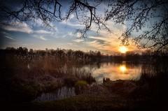 March - Mrz (dannicamra) Tags: sunset sky sun lake reflection nature water germany landscape bayern bavaria see nikon sonnenuntergang sundown himmel regensburg landschaft sonne d5100