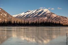 Canadian Rockys visit (MaxGag) Tags: winter lake canada tree ice jasper rockys refelection mountais