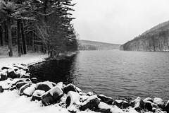 DSC03316.jpg (pbradyinct) Tags: lake snow tree water connecticut crescentlake meriden