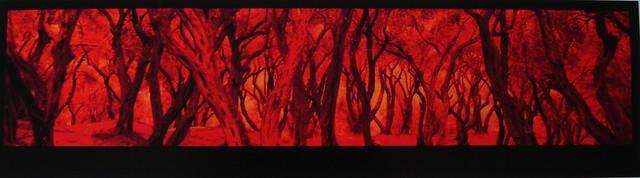 Yates  'Grove Fire'