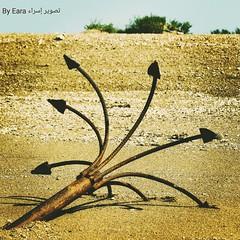 Boat's anchor. #sand #sky #tree #anchor  الباوره. #باوره #جزيرة_مسجان #رمال (Esra Ben Jassem) Tags: sky tree sand anchor رمال باوره جزيرةمسجان