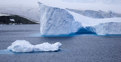 DSC02490 (peng_tim1) Tags: antarctica eis antarctic eisberg iceiceberg anartikis