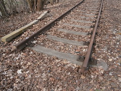 Reste Gterstrecke Teltow 2016 - 16 (Abandoned-Stillgelegt Berlin) Tags: railroad trees tree abandoned train germany deutschland bush track tracks railway bushes bume brandenburg baum gleise busch ballast gleis bahnstrecke stillgelegt trackbed teltow bahndamm schotter schwellen bsche b landbrandenburg betonschwellen bahnbergnge holzschwellen betonschwelle holzschwelle altebahnstrecke gterstrecke stadtteltow ehemaligegterstrecke ehemaligebahnstrecke