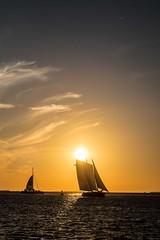 Setting sun (agruebl) Tags: sunset sea sky sun water meer wasser sailing sonnenuntergang florida outdoor natur himmel sail keywest sonne segeln segelboot settingsun abendsonne drausen
